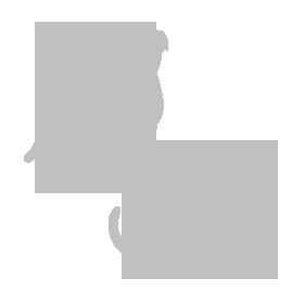 小型犬・猫