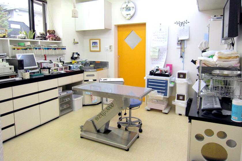 診療科目|MRIやCT等の高度画像検査、整形外科、神経科、皮膚科、眼科、麻酔科、画像診断科、腫瘍科、放射線治療科、腹腔鏡手術、超音波検査、 内視鏡検査、関節鏡検査、組織採取、細胞診、前十字靭帯断裂整復(TPLO、CBLO)、骨折整復、椎間板ヘルニア、人工股関節全置換術(THR)