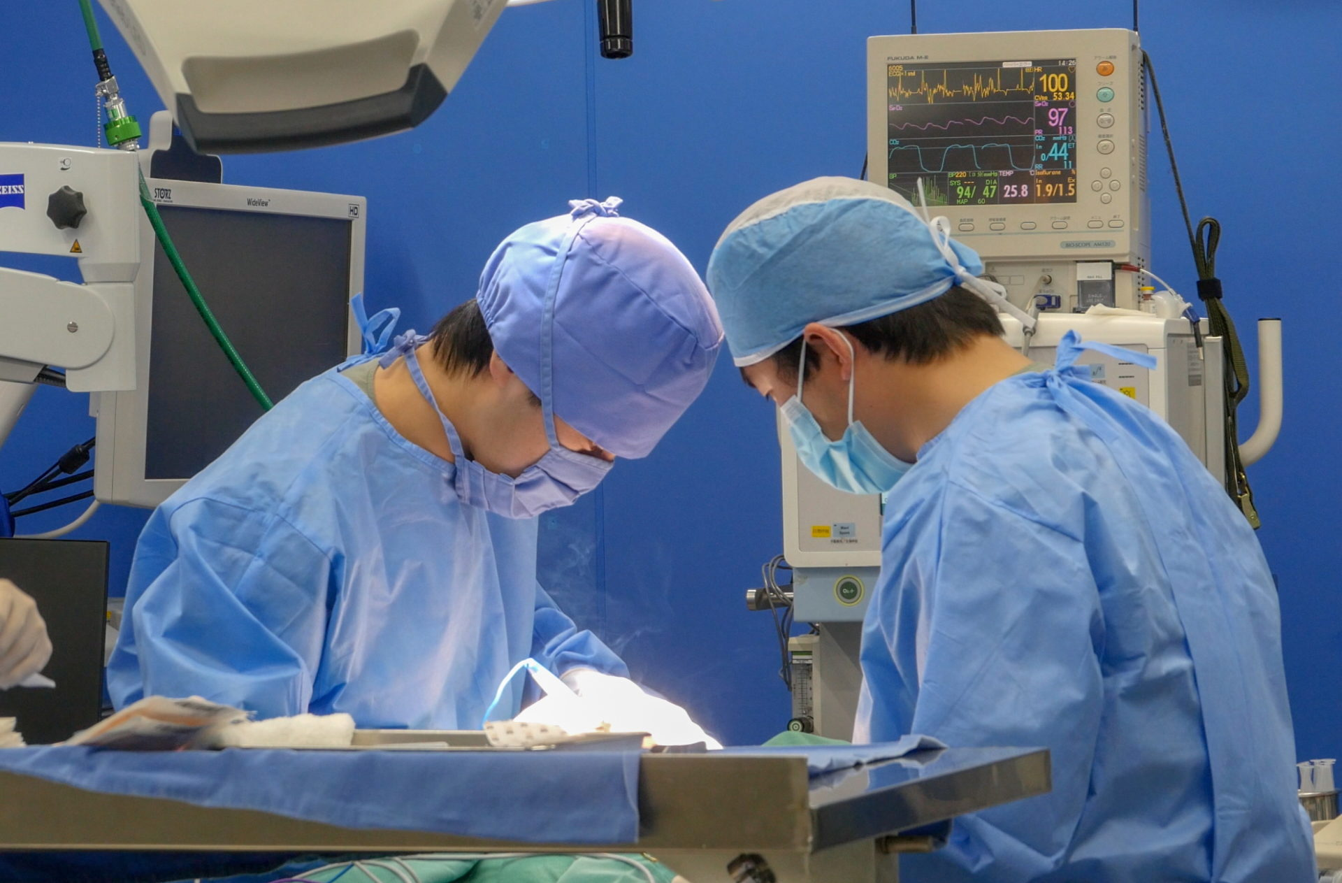 たぐち動物病院|犬猫専門外来|MRIやCT等の高度画像検査、整形外科、神経科、皮膚科、眼科、麻酔科、画像診断科、腫瘍科、放射線治療科、腹腔鏡手術、超音波検査、 内視鏡検査、関節鏡検査、組織採取、細胞診、前十字靭帯断裂整復(TPLO、CBLO)、骨折整復、椎間板ヘルニア、人工股関節全置換術(THR)